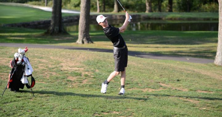 Indiana boys golf drives for a successful season