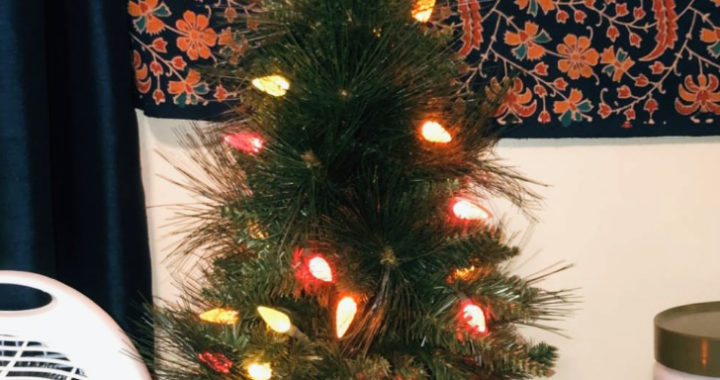 Should Christmas trees be put up before or after Thanksgiving?